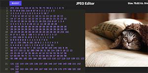 C515_JPG