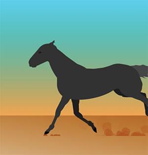 C538_horse
