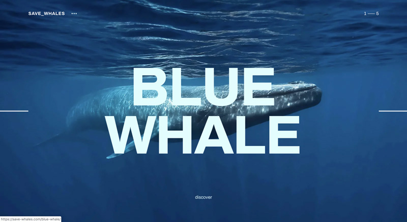 Save-whales