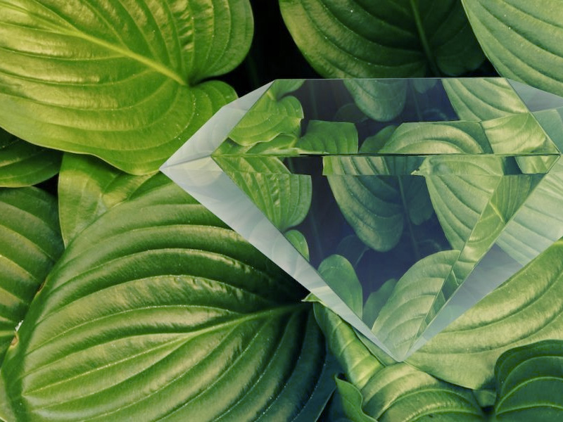 Refraction_featured