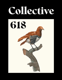 Collective618 cover