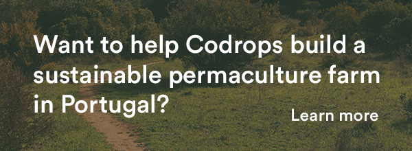 Want to help Codrops build a sustainable permaculture farm in Portugal?