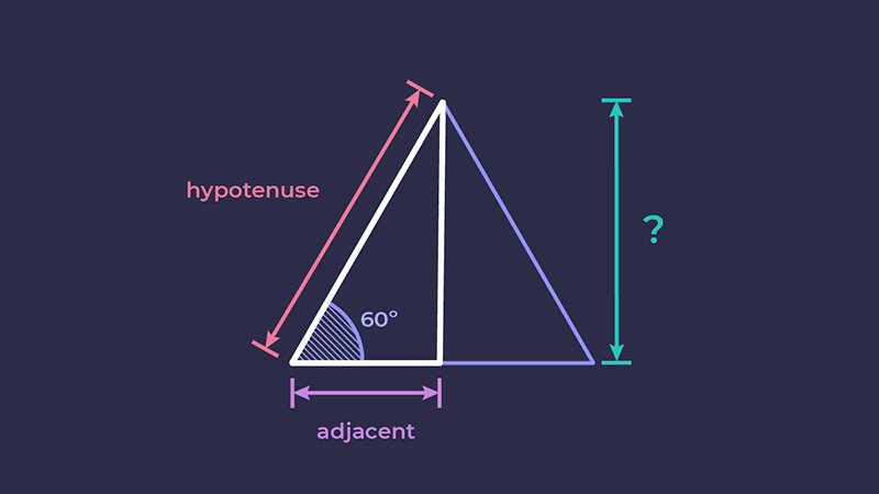 An equilateral triangle split into two right-angled triangles.