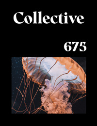 Collective675