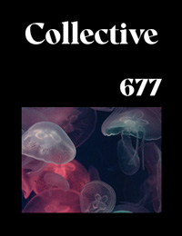 Collective677